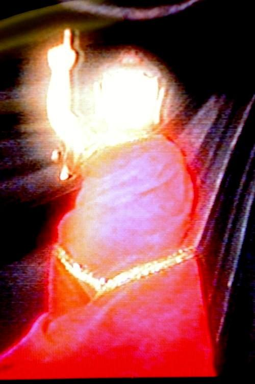 王程娥芬居士及丈夫王灵泽居士学到真正的佛法得大成就 第2张